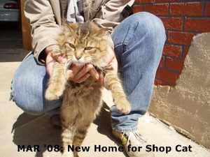 MAR '08: New Home for Shop Cat